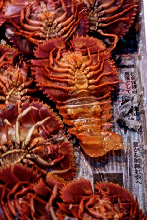 Flat Lobster Tsukiji Fish Market, Tokyo Japan