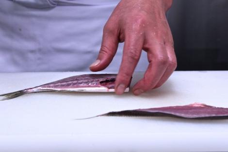 Mackerel Filet