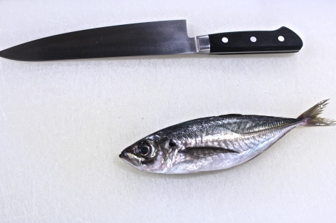 How To Make Sushi: Filleting Mackerel